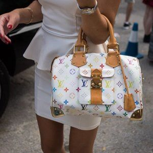 LOUIS VUITTON Multicolor Speedy 30 Tote Bag